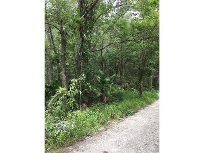 Hernando County, Hillsborough County, Pasco County, Pinellas County Residential Lots & Land For Sale: 0 Texel Avenue