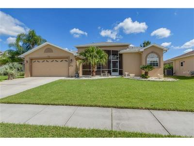 Brooksville Single Family Home For Sale: 4293 Caliquen Drive
