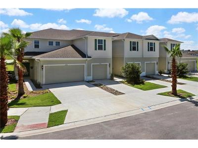 Hernando County, Hillsborough County, Pasco County, Pinellas County Townhouse For Sale: 2235 Broadway View Avenue
