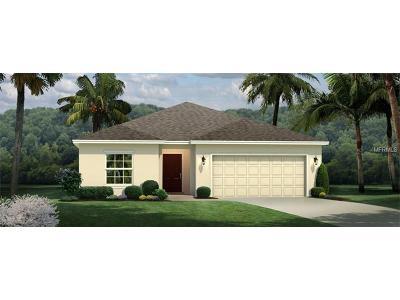 Riverview Single Family Home For Sale: 14115 Poke Ridge Drive