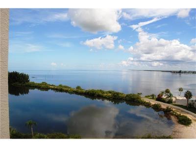 Hernando County, Hillsborough County, Pasco County, Pinellas County Condo For Sale: 6009 Sea Ranch Drive #705