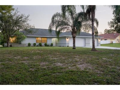 Weeki Wachee Single Family Home For Sale: 7378 Jomel Drive
