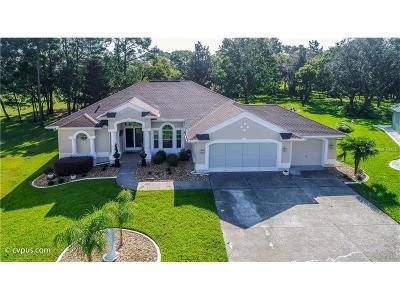 Spring Hill Single Family Home For Sale: 10393 Locker Drive