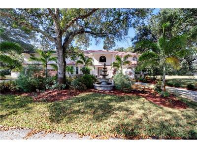 Safety Harbor FL Single Family Home For Sale: $1,100,000