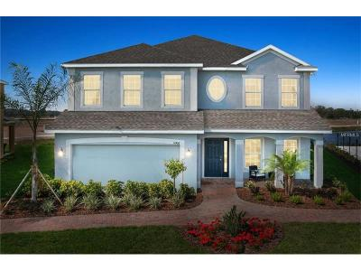 Gibsonton Single Family Home For Sale: 12137 Ledbury Commons Drive