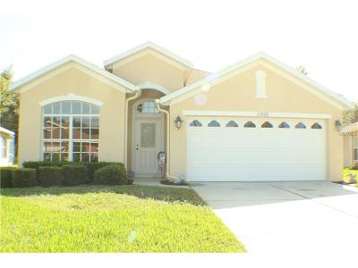Hernando County Single Family Home For Sale: 11920 Valley Falls Loop
