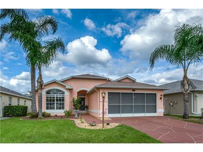New Port Richey Single Family Home For Sale: 11449 Dampier Court