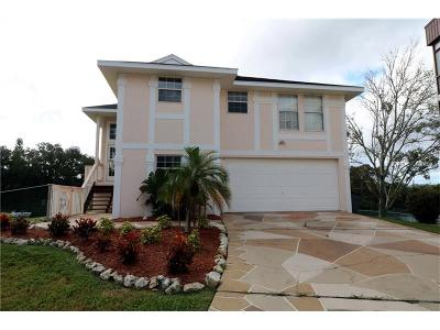 New Port Richey Single Family Home For Sale: 5848 Dailey Lane