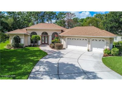Brooksville Single Family Home For Sale: 5161 Championship Cup