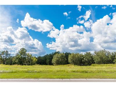 Hernando County, Hillsborough County, Pasco County, Pinellas County Residential Lots & Land For Sale: N Grand Summit Drive
