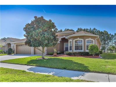 Hernando County, Hillsborough County, Pasco County, Pinellas County Single Family Home For Sale: 11630 Fairfield Court