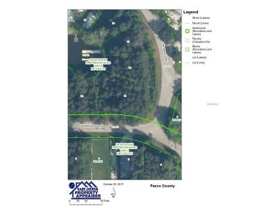 Hernando County, Hillsborough County, Pasco County, Pinellas County Residential Lots & Land For Sale: Lot 93 Seaview Boulevard