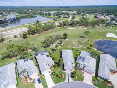 Hernando County, Hillsborough County, Pasco County, Pinellas County Single Family Home For Sale: 9187 Penelope Drive