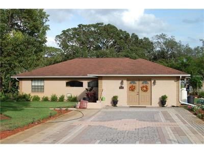 New Port Richey Single Family Home For Sale: 9124 Flint Street