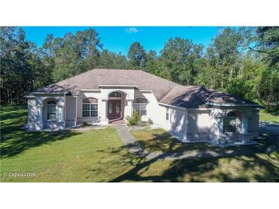 Brooksville Single Family Home For Sale: 15045 Morgan Lane