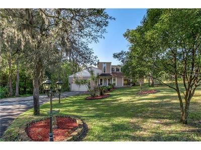 New Port Richey Single Family Home For Sale: 8055 Sycamore Drive