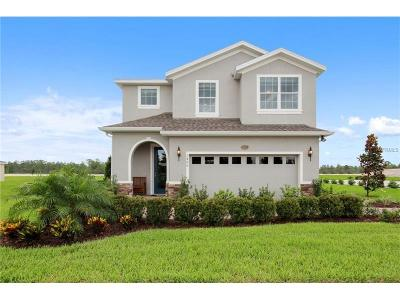 Deland Single Family Home For Sale: 1385 Riley Circle