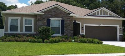 Apopka Single Family Home For Sale: 1781 Alejo Drive