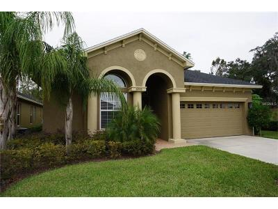 Lakeland Single Family Home For Sale: 6005 Stoney Creek Place