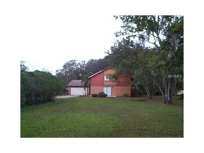 New Port Richey, New Port Richie Single Family Home For Sale: 11105 Blackwood Drive