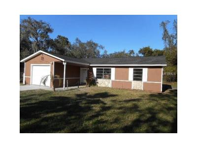 New Port Richey Single Family Home For Sale: 9738 Halley Court