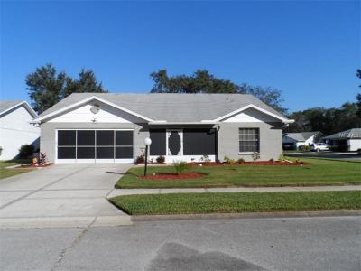 Pasco County Single Family Home For Sale: 10502 Quimby Drive