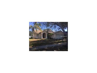Tarpon Spring, Tarpon Springs Single Family Home For Sale: 669 Salt Lake Drive