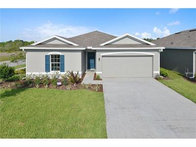Wimauma, Wimauma` Single Family Home For Sale: 14524 Haddon Mist Drive