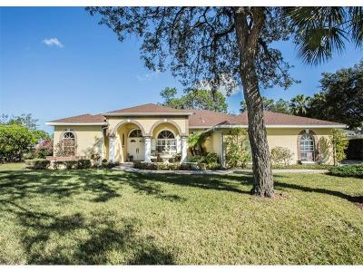 New Port Richey Single Family Home For Sale: 10905 Setaria Court
