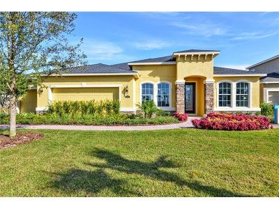 Volusia County Single Family Home For Sale: 954 Glazebrook Loop