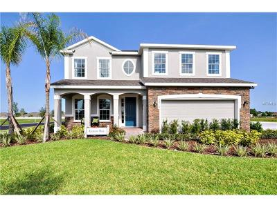 Volusia County Single Family Home For Sale: 962 Glazebrook Loop