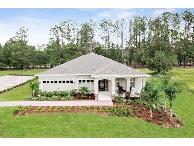 Volusia County Single Family Home For Sale: 966 Glazebrook Loop