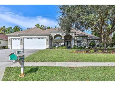 Hernando County, Hillsborough County, Pasco County, Pinellas County Single Family Home For Sale: 5435 Championship Cup Lane