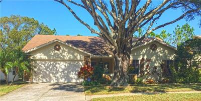 Port Richey Single Family Home For Sale: 8025 Merrimac Drive
