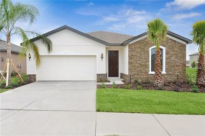 Riverveiw, Riverview, Riverview/tampa Single Family Home For Sale: 11115 Spring Point Circle