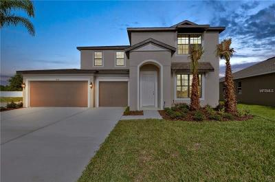 Riverveiw, Riverview, Riverview/tampa Single Family Home For Sale: 11119 Spring Point Circle