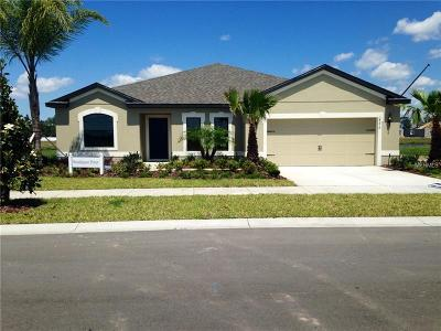 Riverveiw, Riverview, Riverview/tampa Single Family Home For Sale: 12208 Angel Mist Place