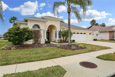 Hudson Single Family Home For Sale: 8137 Morning View Drive