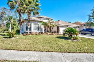 Land O Lakes Single Family Home For Sale: 23307 Dinhurst Court