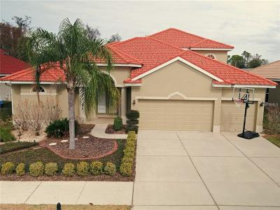New Port Richey Single Family Home For Sale: 11705 Belle Haven Drive
