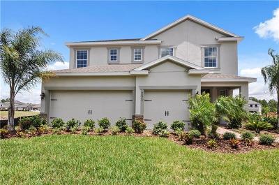 Sanford Single Family Home For Sale: 3775 Hanworth Loop