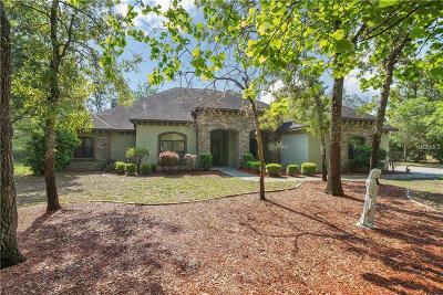 Brooksville Single Family Home For Sale: 15700 Josh Whitney Way