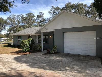 Mount Dora Single Family Home For Sale: 3356 Oak Hill Road