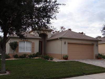 Pasco County Single Family Home For Sale: 14701 Strathglass Drive
