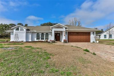 Spring Hill, Springhill Single Family Home For Sale: 4119 Castle Avenue