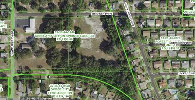 Hernando County, Hillsborough County, Pasco County, Pinellas County Residential Lots & Land For Sale: 5606 Mariposa Drive