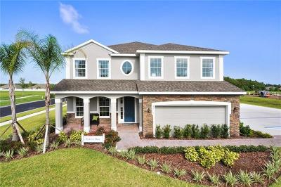 Gibsonton Single Family Home For Sale: 12024 Ledbury Commons Drive