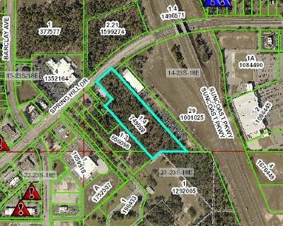Hernando County Commercial For Sale: E37 Spring Hill Drive