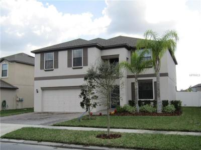 New Port Richey Single Family Home For Sale: 12358 Eagle Chase Way