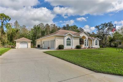 New Port Richey Single Family Home For Sale: 11607 Eastern Star Court